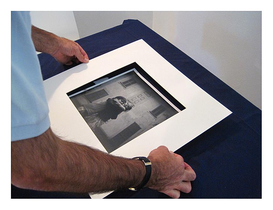 Come allestire la mostra fotografica - No Vivisezione